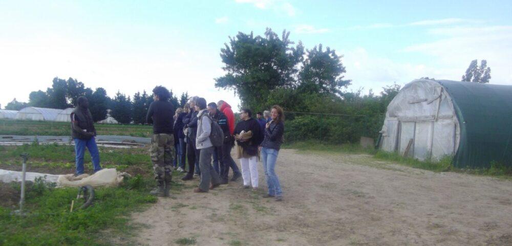 Visite du Potager Mi-Plaine