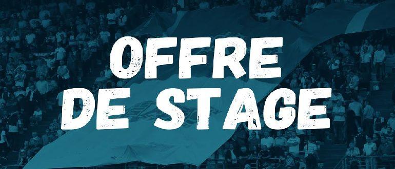 offre-de-stage